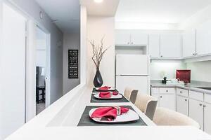 Le 700 St-Joseph - Bachelor Apartment for Rent Gatineau Ottawa / Gatineau Area image 6