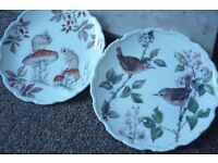 Royal Albert Bone China Plates