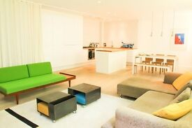 Amazing Shoreditch Apartment with Large Private Roof Terrace