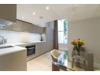 Incredible flat for those looking for Luxury! Gym, Rooftop terrace in the building , available now