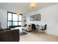 Stunning 1 bed in THE SPHERE CANNING TOWN E16 ROYAL VICTORIA STAR LANE CANARY WHARF NEWHAM