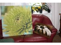 Flower paintings | £10 | Wall decorations