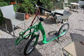 Green Pawtrecker Dog Scooter