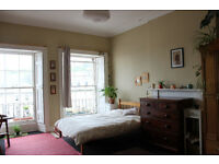 Spaceous central room available short term