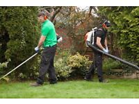 GARDEN MAINTENANCE SERVICES PRICE CRUSHER - UP TO 30%!!!