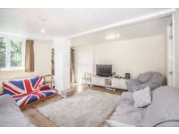 3 BED 2 BATH * PRIVATE GARDEN * DE BEAUVOIR * REGENTS CANAL