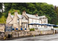 Chef De Partie Harry's Pub Threebridges £7.50 to £8.50 per hour
