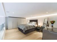 AMAZING MEZZANINE 1 BEDROOM FLAT~COUPLE WELCOME~BRAND NEW FLAT~GYM~PORTER~LIFT~ROOF TOP~MOVE IN NOW