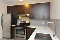 Newly Renovated Bachelor Suite - Forest Hill Village