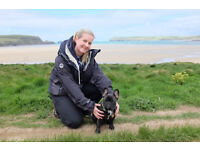 JessiCares 4 Pets - Dog Walking & Pet Care Services in Bury St Edmunds and surrounding areas
