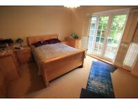 Huge 3 bedroom detached bungalow with large garden, driveway and garage to rent on Benett Drive