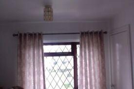 """Eyelet Lined Curtains Mink Beige Natural Leaf 66x72"""""""