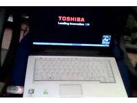 Toshiba equium