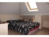 Lovely double room in large, spacious house.