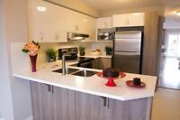Brand New Applewood Village 2 Bedroom Townhomes – NE Calgary