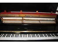Elysian Shiny Black Upright Piano | Belfast Pianos
