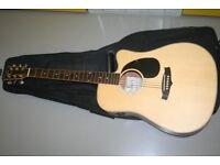 Tanglewood Evolution Guitar with gig bag