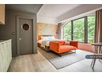 Studio flat in Queens Terrace, Southampton, SO14 (#995492)
