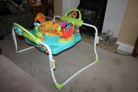 Fisher Price Roarin' Rainforest Jumperoo,l ittle used in very good order.