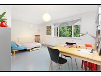 Studio SE17, DSS, Pets Welcome!