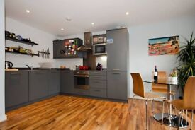 High Spec two bedroom flat close to King's Cross and Angel stations!!