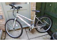 Ladies Bicycle Excellent condition