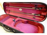 Jacob Winter Ecoline Violin Case 4/4 size