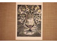 Handrawn Leopard Portrait