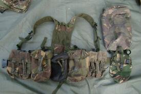 DPM PLCE Webbing Set (yoke, belt, 5 pouches, plus) genuine British Army Issue
