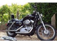 Harley Davidson Sportster XL883C - Stunning Black! -