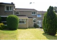 Extended 3 Bedroom Mid Link Home in Lanchester is offered on an unfurnished or part furnished let.