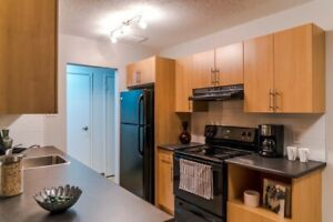 Owen Apartments, 650 Stafford, 1 Bedroom for May 1