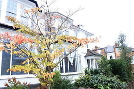 Huge 2/3 bedroom flat on a prime road just off the Broadway