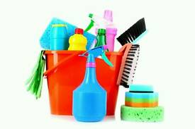 Housekeeping and cleaning /ironing/