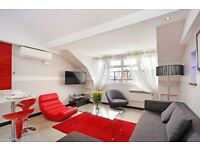 ***SPACIOUS 1 BEDROOM FLAT ***AVAILABLE NOW IN HEART OF LONDON***