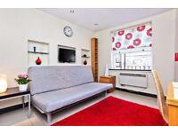 Stunning studio flat in Baker Street