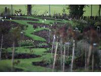 Grounds Technician / Gardener