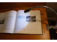Stainless Steel LED Desk Lamp with Clip