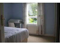 Double Room (~3mx3m) available now in spacious & quiet 3 bedroom ground floor flat.