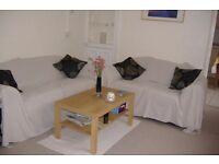 Friendly female needed 1st June for lovely double room in social Roath house x