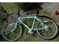 2 adult bikes for sale with accessories