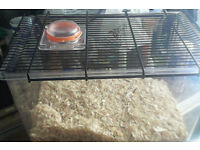 Ferplast small cage for mouse/gerbil/hamster etc