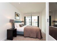 Modern & spacious 2 bedroom 2 bathroom apartment 5th floor Horizons Tower Blackwell Canary Wharf E14