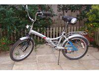 Folding Bike Challenger