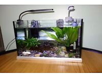 Elite fish tank and stand, with extras.