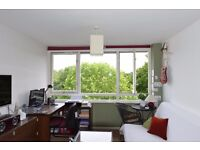 1 Bedroom Flat - Excellent Condition - Brentford Dock Marina and Thames Views