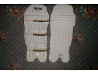cricket pads (Youth new)