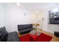 PRICE REDUCTION***SPACIOUS TWO DOUBLE BEDROOM FLAT***MARBLE ARCH**BOOK NOW!