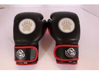 Children Bear Pro Elite Sparring & Training Gloves 12oz weight