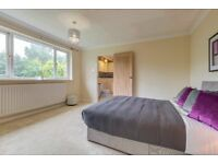 Gorgeous rooms in newly refurbished house close to all amenities in a quiet cul de sac - NO DEPOSIT